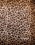 cahier sexy leopard
