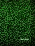 cahier green leopard